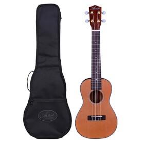 artist-ukc200-ukulele-solid-top-concert-size-bag
