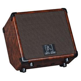 wood-15-acoustic-guitar-amplifier-15-watt